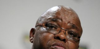 Gwede Mantashe Biography